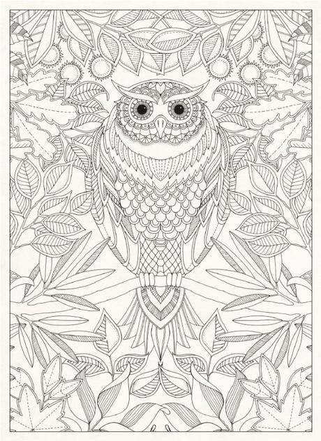 Colouring Books For Adults Paperblog