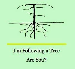 Profligate Man-willow