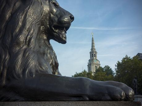 Lion in Trafalgar Square with St. Martin-in-the-Fields