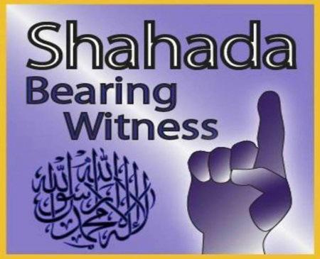 Shadaha1