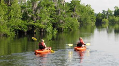 Kayak Through the Dead Lakes