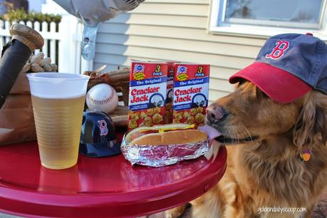 dog eating fenway frank Red Sox opening day
