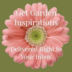 All Green Garden Design