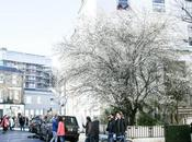 Spring Starts Notting Hill Obviously