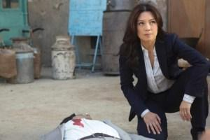 Agents-of-SHIELD-S02E17-The-Calvary-570x380
