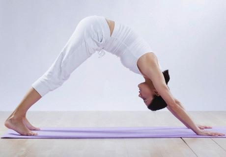Adho Mukha Svanasana or Downward Facing Dog Pose