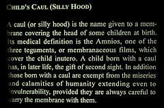 Child's Caul (Silly Hood)