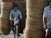 Your Bike Cambodia