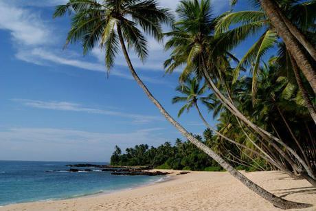 Sri Lanka's beautiful south coast