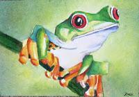 Tree Frog - ACEO