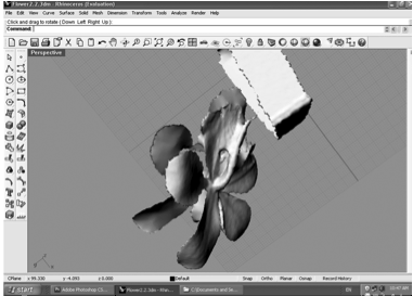 Biomimicry of Orchids – PART 4 – Structural lessons from Orchid