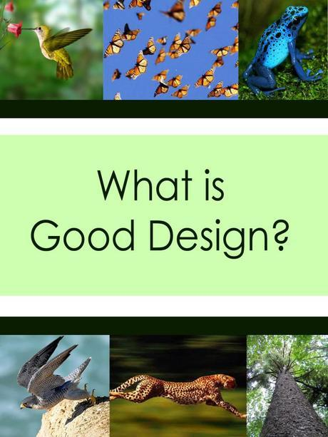 Good design must at a minimum be design for purpose. Every aspect should create a holistic design.