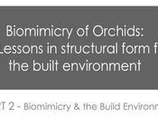 Biomimicry Orchids Built Form Part