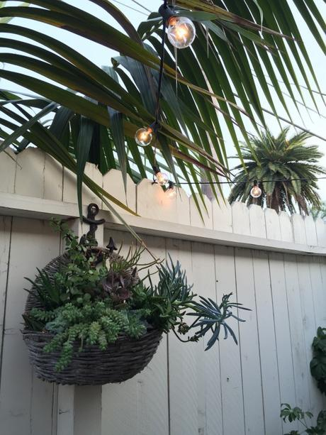 Succulents-Plants-Patio-Lights-Sting-Crate-and-Barrel-White-Fence-Beach-Anchor-Hook-Rustic-Cast-Iron-Palm-Frond-Tree-Basket-Hanging