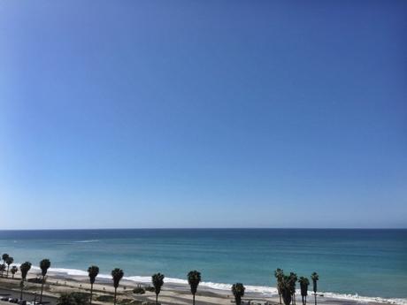Beach-Capistrano-State-Beach-Palm-Trees-Shoreline-Ocean-Sea-View