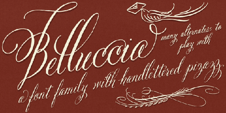 Belluccia font, calligraphy font, wedding font, script font, fancy font, cursive font,DIY wedding, fonts for weddings, fonts for invitations, most popular fonts, best sellling fonts, fancy fonts, fancy letters