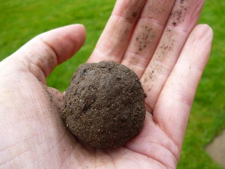 analysing your garden soil