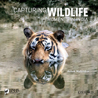 Book Review : Capturing Wildlife Moments In India