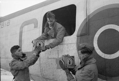 The Royal Air Force Pigeon Service