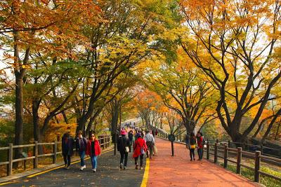 Namsan: Park, Tower, and Village