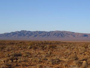 Looking east toward the northern Flinders Ranges from Ediacara Conservation Park. © CJA Bradshaw
