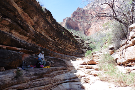Day 51: Grand Canyon: Tonto West & S Bass Trails