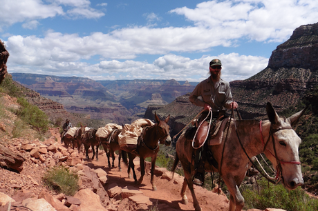 Day 49: Grand Canyon: Bright Angel & Tonto West Trails