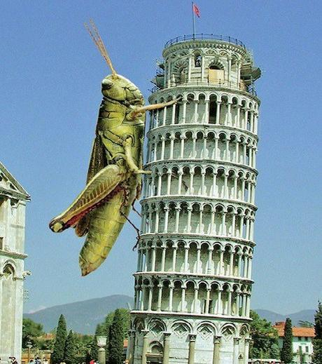 Top 10 Photoshopped Images of The Worlds Biggest Animals