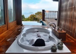 Sunken Bathtub, Best Hotel Room Views in Asia, Japan