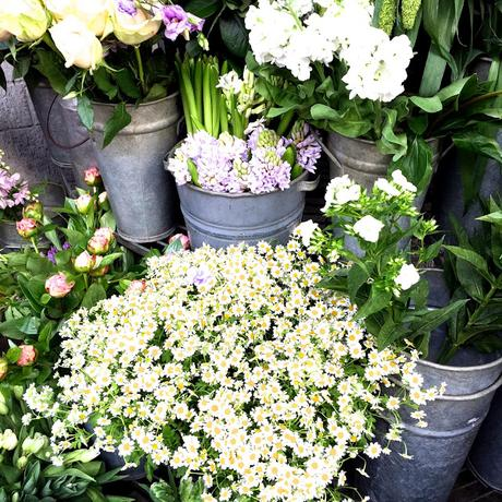 London Flowers and a New Blog