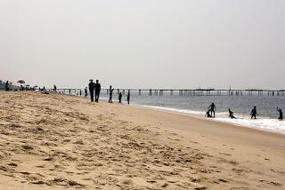 Water Sports and Activities in Alleppey Beach