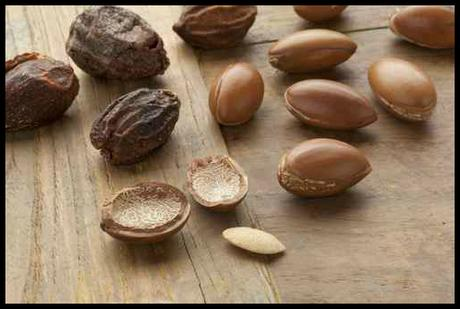 argan oil nuts, savvy brown