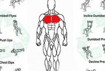 How To Make Your Chest Hard At Home