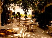 Restaurant Review: Olive Kitchen, Near Qutub Minar, Mehrauli