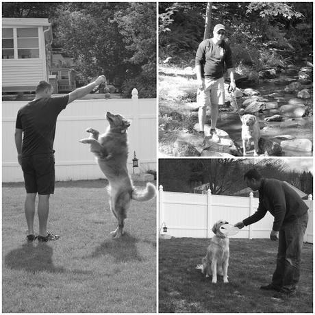 Father's Day with dogs