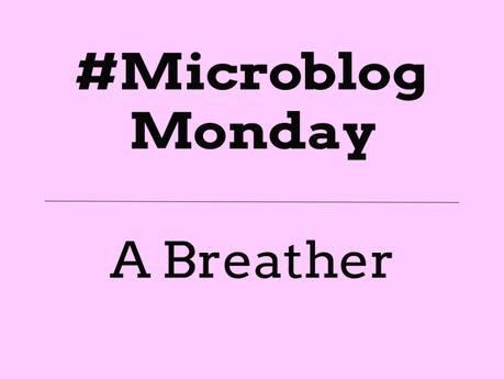 #MicroblogMonday #12 – A Breather