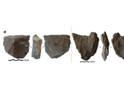 Could Oldest Stone Tools