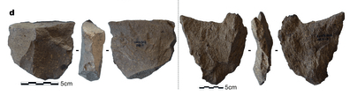 How old could the oldest stone tools be?