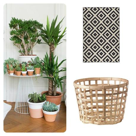 Collage-Ikea-LAPPLJUNG-RUTA-Rug-Black-White-Geometric-Aztec-Patterned-Gaddis-Basket-Natural-Yucca-Plant-Potted-Indoor-Cactus