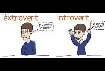 essay on extroverts