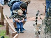 Visit South Lakes Safari