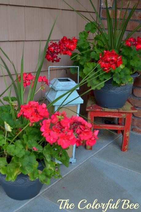 red geraniums and a painted lantern for a porch decoration