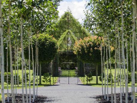 tree church3