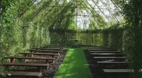 tree church2
