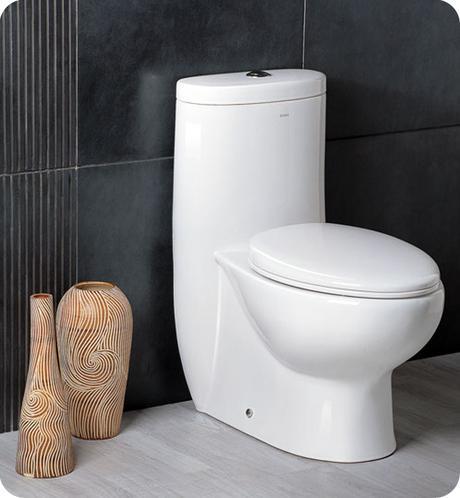 delphinus one piece dual flush toilet water saving efficient conservation modern bathroom design
