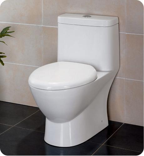 serena one piece dual flush toilet water efficient saving conservation bathroom modern design