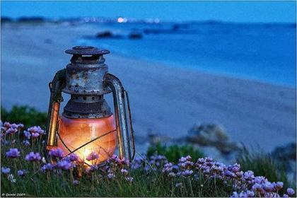 Evening light on the beach HQ Wallpaper