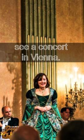 concert in vienna 2