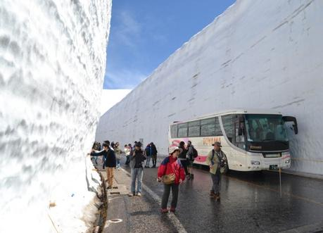 Tall Snow Wall , Alpine Route by JR Pass Japan Rail