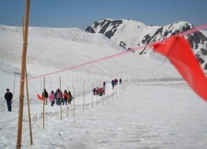Snow View Walks, Alpine Route by JR Pass Japan Rail